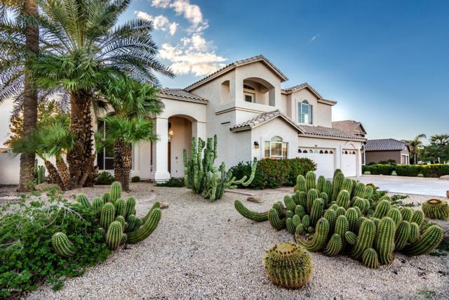 902 N El Dorado Drive, Gilbert, AZ 85233 (MLS #5836602) :: The Bill and Cindy Flowers Team