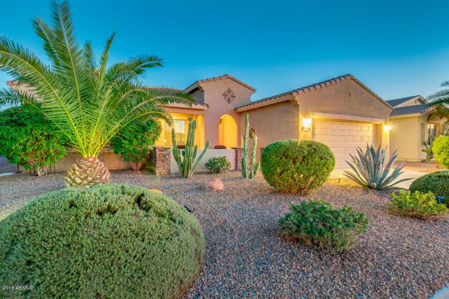42597 W Kingfisher Drive, Maricopa, AZ 85138 (MLS #5836635) :: The Bill and Cindy Flowers Team