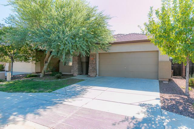 17731 W Young Street, Surprise, AZ 85388 (MLS #5836638) :: Abrams International and Homehelper Consultants