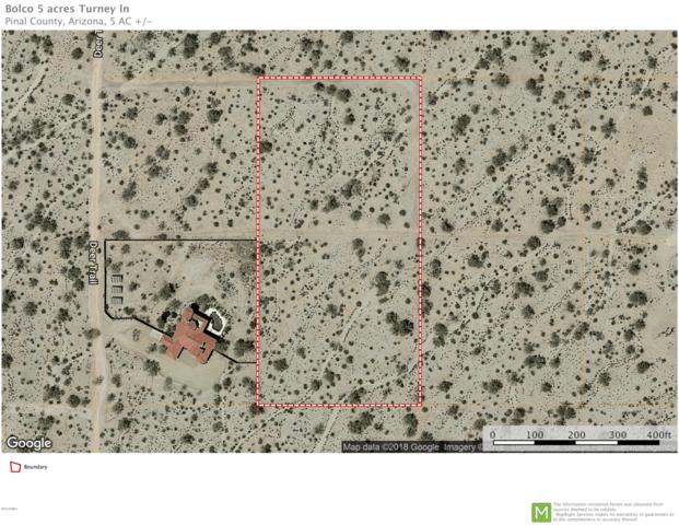 53446 W Turney Lane, Maricopa, AZ 85139 (MLS #5836747) :: The Pete Dijkstra Team