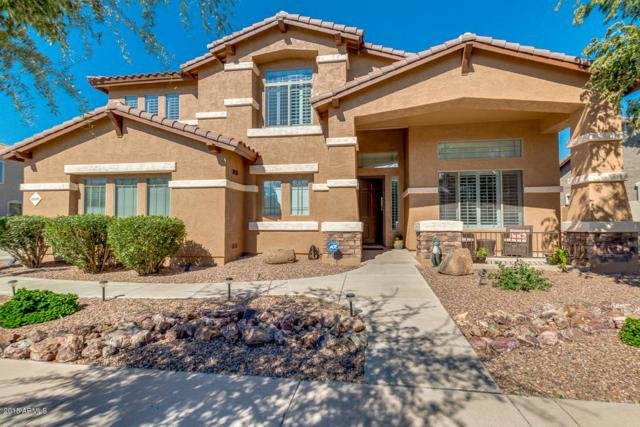 18698 E Peartree Lane, Queen Creek, AZ 85142 (MLS #5836801) :: The Pete Dijkstra Team