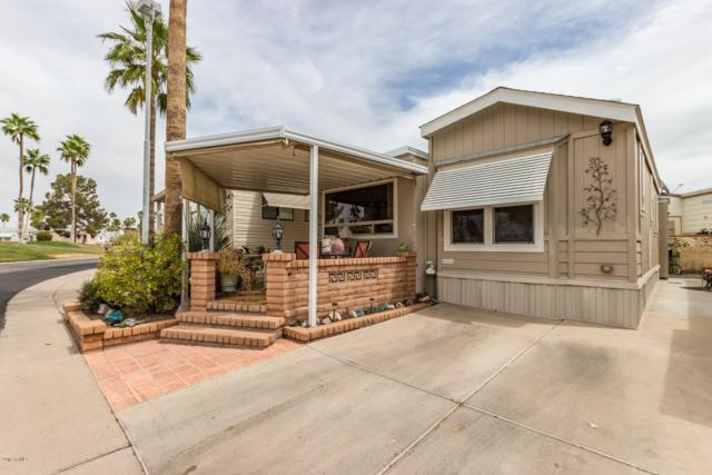 2502 W Paiute Avenue, Apache Junction, AZ 85119 (MLS #5836848) :: The Kenny Klaus Team