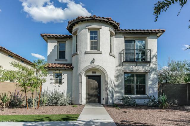 3439 W Hayduk Road, Laveen, AZ 85339 (MLS #5836856) :: Team Wilson Real Estate