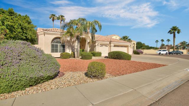 11106 W Ashland Way, Avondale, AZ 85392 (MLS #5836917) :: Brent & Brenda Team