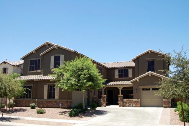 6250 S Rochester Drive, Gilbert, AZ 85298 (MLS #5836929) :: The Bill and Cindy Flowers Team