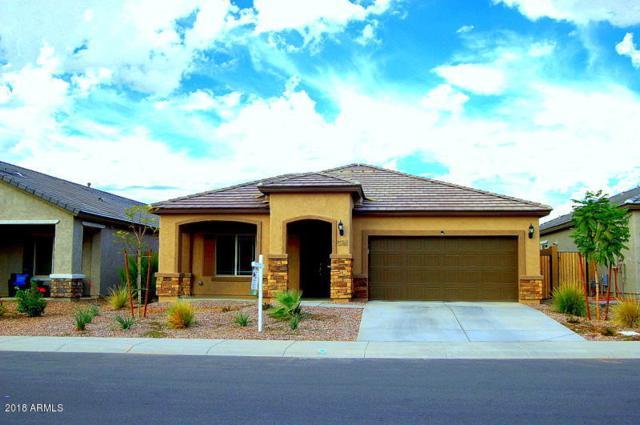 11144 E Tumbleweed Avenue, Mesa, AZ 85212 (MLS #5836930) :: The Kenny Klaus Team