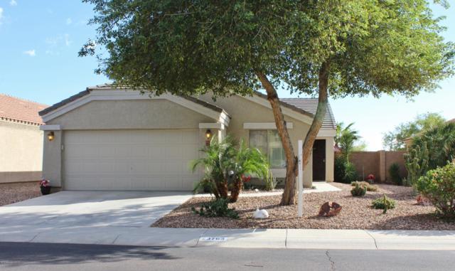 23763 W Bowker Street, Buckeye, AZ 85326 (MLS #5836940) :: Devor Real Estate Associates