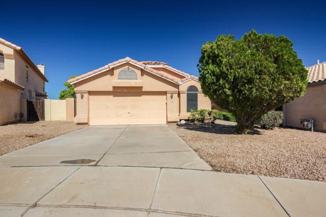 12736 W Holly Street, Avondale, AZ 85392 (MLS #5836943) :: Brent & Brenda Team