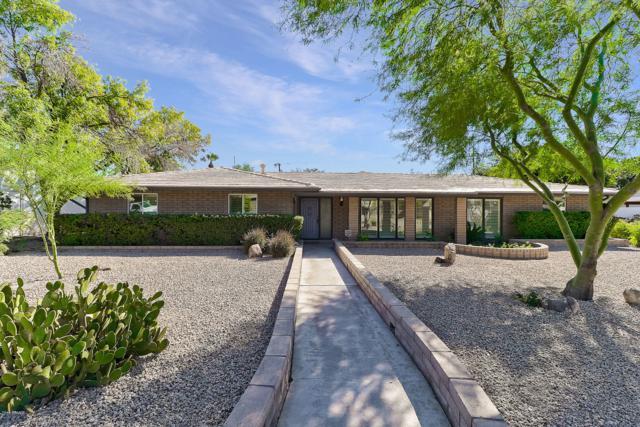 531 W Why Worry Lane, Phoenix, AZ 85021 (MLS #5836949) :: The Kenny Klaus Team
