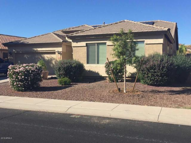 16840 W Tara Lane, Surprise, AZ 85388 (MLS #5836955) :: Abrams International and Homehelper Consultants