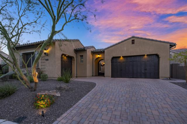 6744 W Lucia Drive, Peoria, AZ 85383 (MLS #5836965) :: Kortright Group - West USA Realty