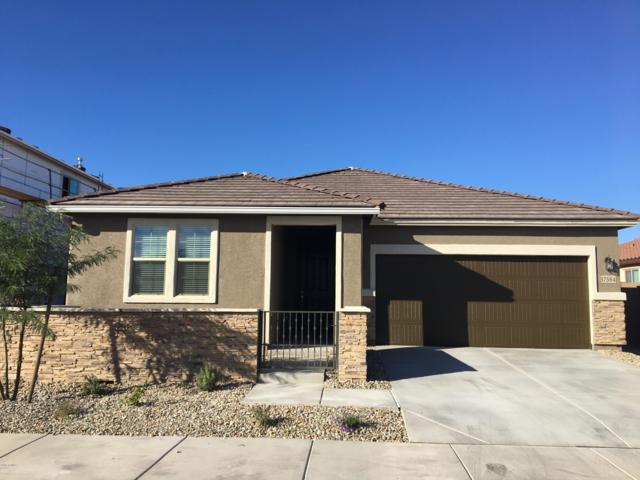 17584 W Tonto Street, Goodyear, AZ 85338 (MLS #5836986) :: The Carin Nguyen Team