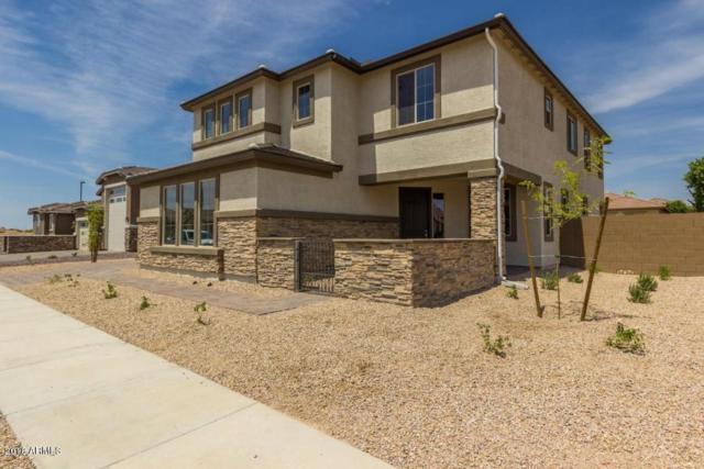 17386 W Sherman Street, Goodyear, AZ 85338 (MLS #5836987) :: Santizo Realty Group