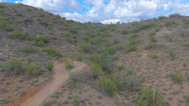 4810 E Creek Canyon Road, Cave Creek, AZ 85331 (MLS #5836989) :: Yost Realty Group at RE/MAX Casa Grande