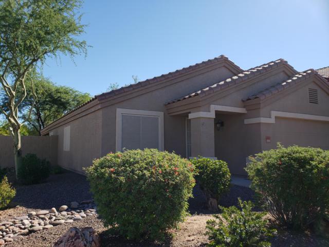 803 S Chatsworth Street, Mesa, AZ 85208 (MLS #5837026) :: The Kenny Klaus Team