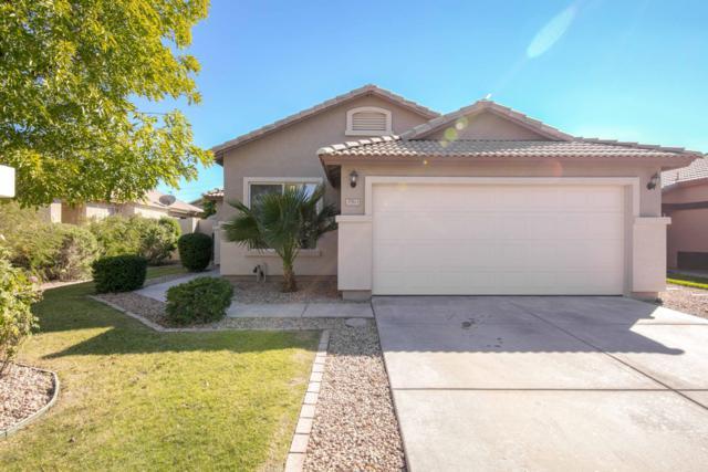 3961 E Olive Avenue, Gilbert, AZ 85234 (MLS #5837027) :: Gilbert Arizona Realty