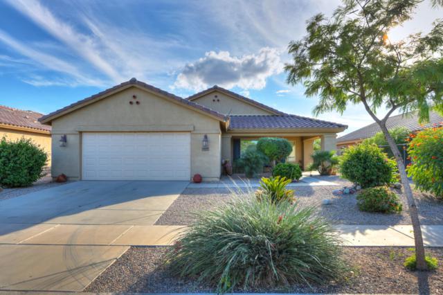 2607 E Desert Wind Drive, Casa Grande, AZ 85194 (MLS #5837052) :: Yost Realty Group at RE/MAX Casa Grande
