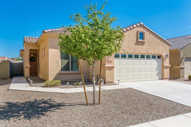 12335 N 67TH Drive, Peoria, AZ 85381 (MLS #5837055) :: Brent & Brenda Team