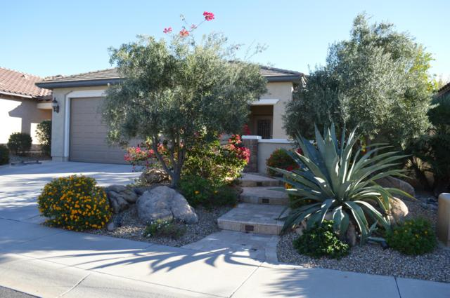 26323 W Potter Drive, Buckeye, AZ 85396 (MLS #5837097) :: Devor Real Estate Associates