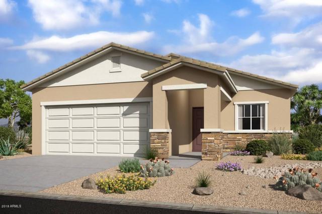 4052 W Ardmore Road, Laveen, AZ 85339 (MLS #5837106) :: RE/MAX Excalibur