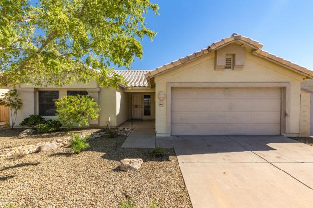 19667 N Central Avenue, Phoenix, AZ 85024 (MLS #5837113) :: Gilbert Arizona Realty