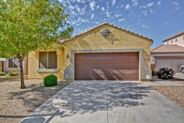 15910 N 74TH Drive, Peoria, AZ 85382 (MLS #5837141) :: Brent & Brenda Team