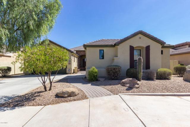4499 N 154TH Avenue, Goodyear, AZ 85395 (MLS #5837155) :: The W Group