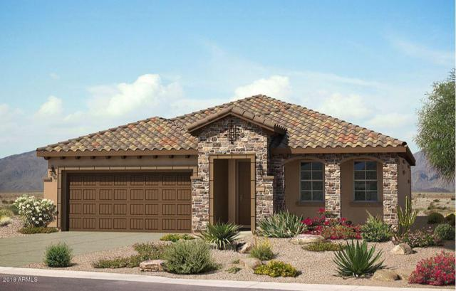 20566 N 274TH Avenue, Buckeye, AZ 85396 (MLS #5837163) :: The Results Group