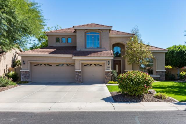 313 S Ironwood Street, Gilbert, AZ 85296 (MLS #5837173) :: The Pete Dijkstra Team