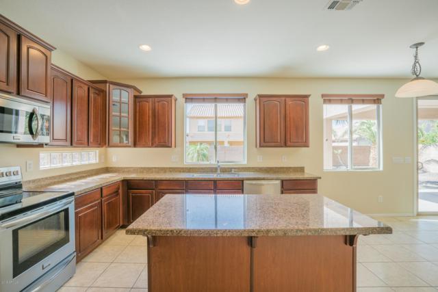 15968 N 175TH Drive, Surprise, AZ 85388 (MLS #5837192) :: Conway Real Estate