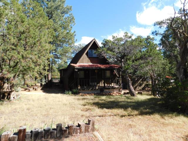 2927 E Mustang Trail, Overgaard, AZ 85933 (MLS #5837235) :: The Bill and Cindy Flowers Team