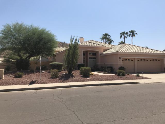2541 E Silverwood Drive, Phoenix, AZ 85048 (MLS #5837251) :: Brent & Brenda Team