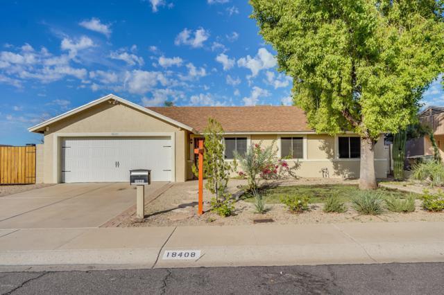 18408 N 55TH Lane, Glendale, AZ 85308 (MLS #5837252) :: Brent & Brenda Team