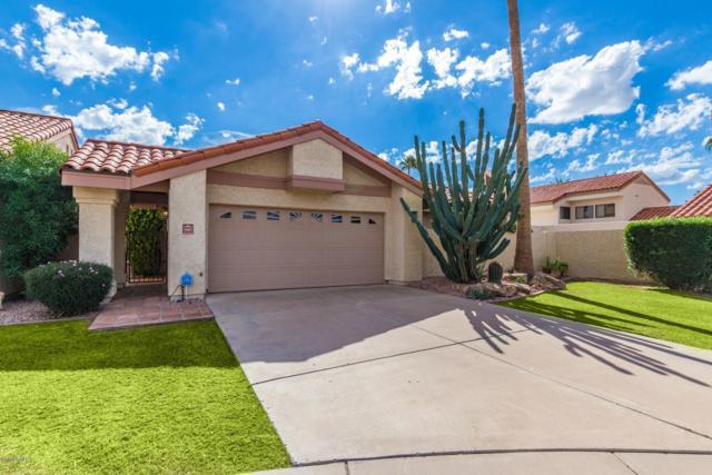 9985 E Purdue Avenue, Scottsdale, AZ 85258 (MLS #5837270) :: The Pete Dijkstra Team