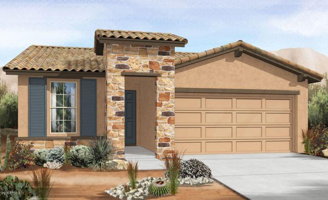 29671 N 114TH Lane, Peoria, AZ 85383 (MLS #5837286) :: The Results Group