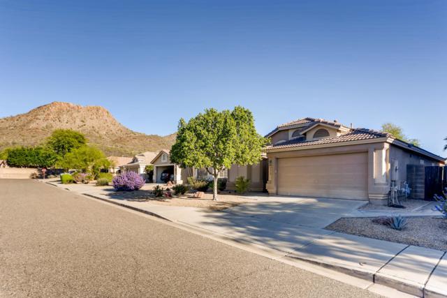 6419 W Chisum Trail, Phoenix, AZ 85083 (MLS #5837315) :: Devor Real Estate Associates