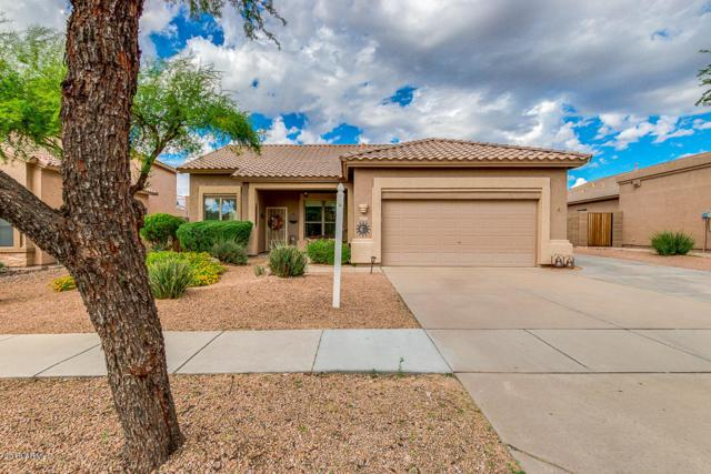 2404 N Malachite, Mesa, AZ 85207 (MLS #5837330) :: The Pete Dijkstra Team