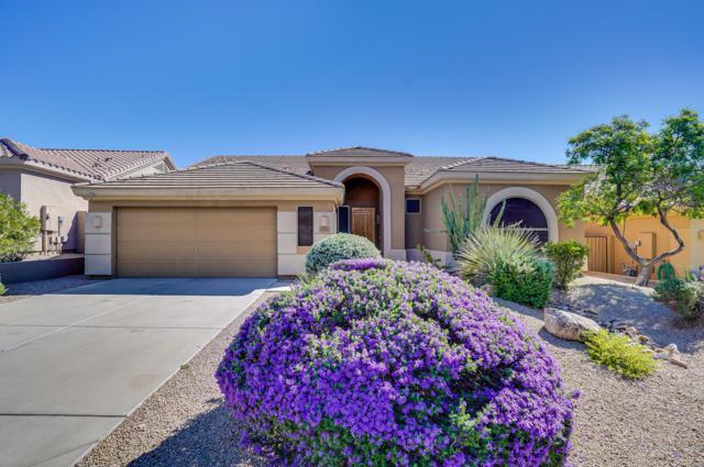 14205 N 106th Place, Scottsdale, AZ 85255 (MLS #5837334) :: The Pete Dijkstra Team