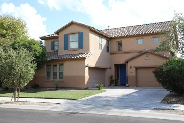 15439 W Morning Glory Street, Goodyear, AZ 85338 (MLS #5837340) :: Devor Real Estate Associates