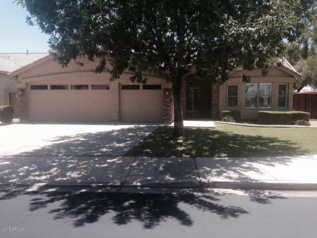 1391 W Bartlett Way, Chandler, AZ 85248 (MLS #5837356) :: The Pete Dijkstra Team