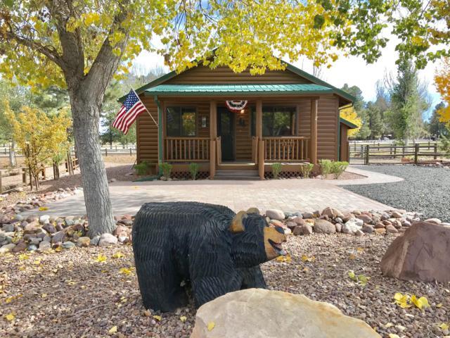 2349 Buffalo Loop N, Overgaard, AZ 85933 (MLS #5837371) :: Devor Real Estate Associates