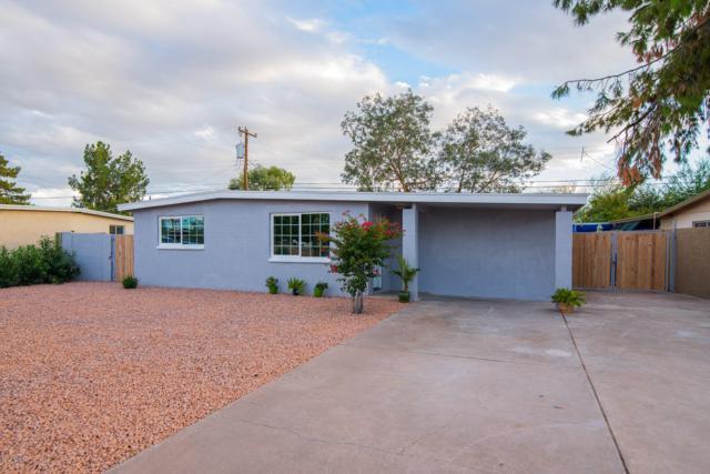 1347 W 6TH Drive, Mesa, AZ 85202 (MLS #5837379) :: The Pete Dijkstra Team