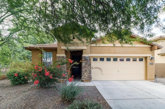 2689 E Clifton Avenue, Gilbert, AZ 85295 (MLS #5837407) :: The Garcia Group