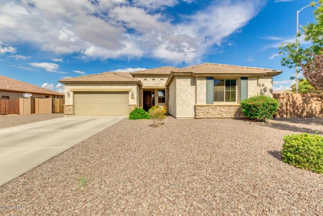 11144 E Roselle Avenue, Mesa, AZ 85212 (MLS #5837427) :: Lifestyle Partners Team