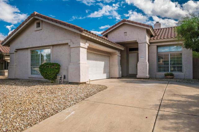 31013 N 44TH Street, Cave Creek, AZ 85331 (MLS #5837429) :: The Pete Dijkstra Team