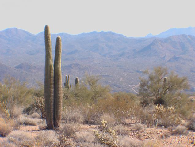 0 W Highland Road, Wikieup, AZ 85360 (MLS #5837778) :: Devor Real Estate Associates