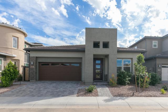 9331 S 55Th Place, Tempe, AZ 85284 (MLS #5837929) :: Brett Tanner Home Selling Team