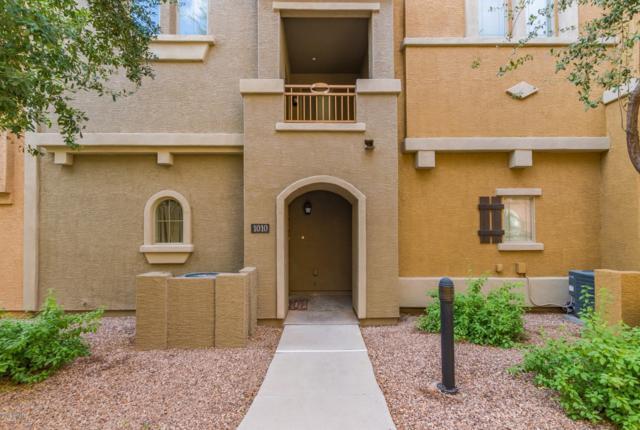 240 W Juniper Avenue #1010, Gilbert, AZ 85233 (MLS #5837946) :: Riddle Realty
