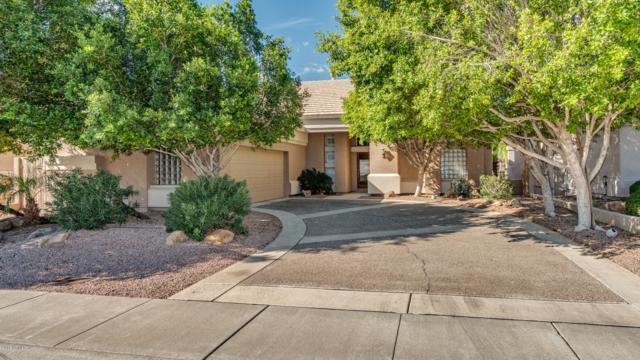 20758 N 56TH Avenue, Glendale, AZ 85308 (MLS #5837947) :: The Garcia Group