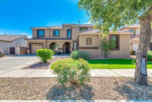 15591 W Yucatan Drive, Surprise, AZ 85379 (MLS #5837958) :: The W Group